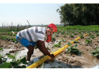 ACF Plays its Part in 'Doubling Farmer Incomes'